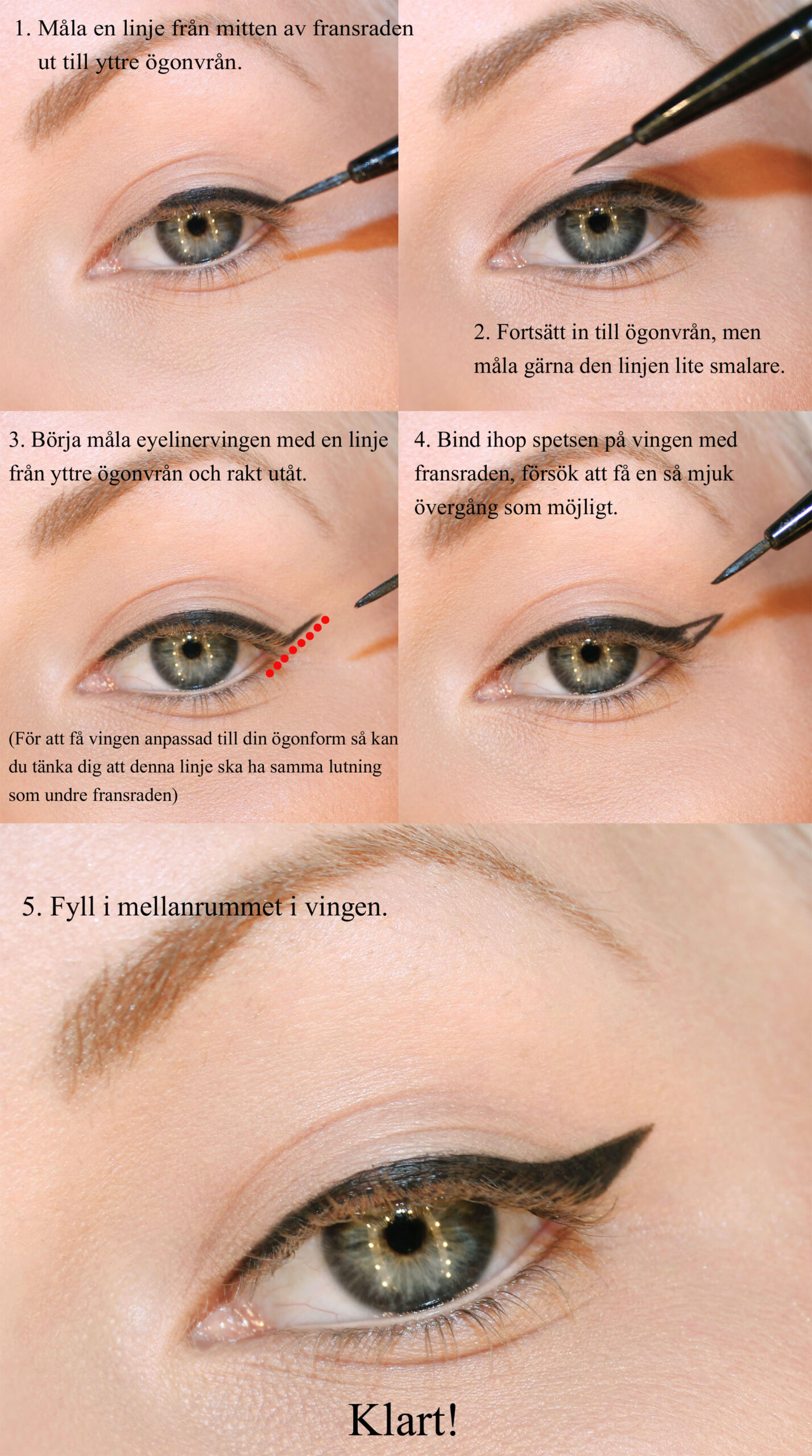 paint eyeliner with wing