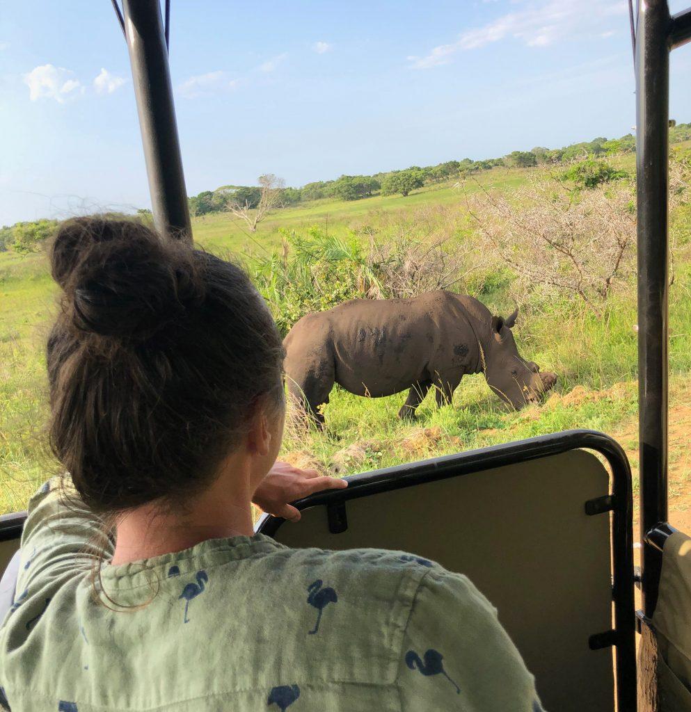 sydafrika safari