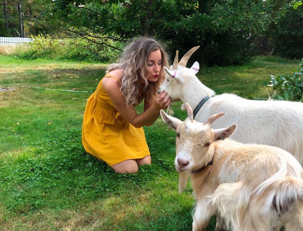 goats as pets